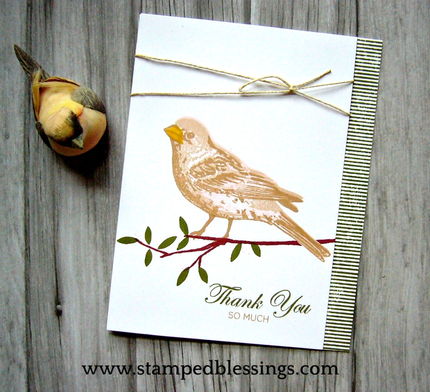 CTMH Thoughtful Bird and Silver and Gold cardmaking stamp set   CAS card ideas   2 and 3 step stamping