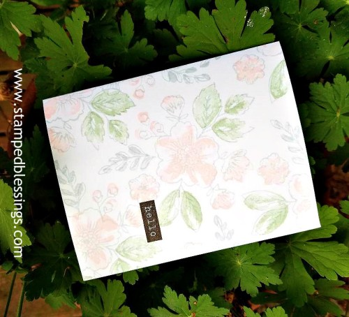 CTMH Bunches of Love | one layer card