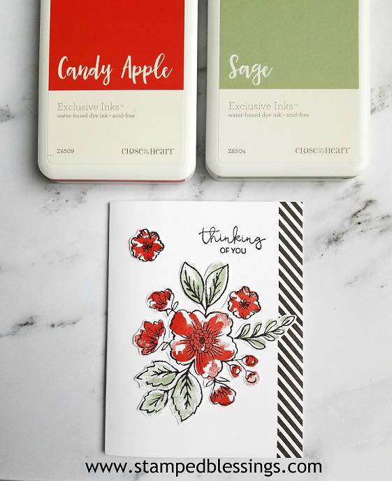 CTMH Bunches of Love, Flower Market and Just Treats - September stamp of the month | one layer card