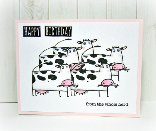 amuse studio rubber stamps, cow stamps, CAS card design